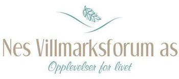 Logo, Nes Villmarksforum AS